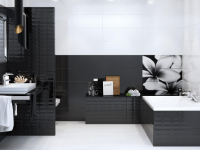Черно-белая - фото